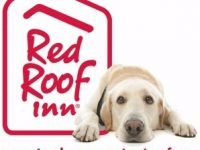 Pets stay free at many Red Roof Inns