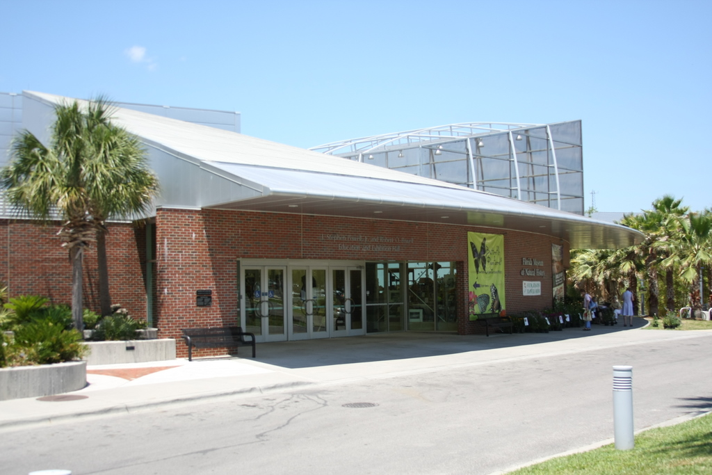 Orlando Florida Museum Of Natural History