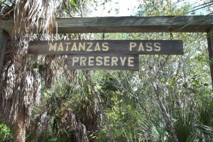 Visit the Matanzas Pass Preserve for Free in Fort Myers
