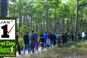 First Day Hikes offered at lots of Florida state parks