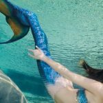 Watch mermaids at Weeki Wachee