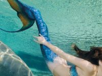 Mermaids swim at Weeki Wachee Springs state park in Florida